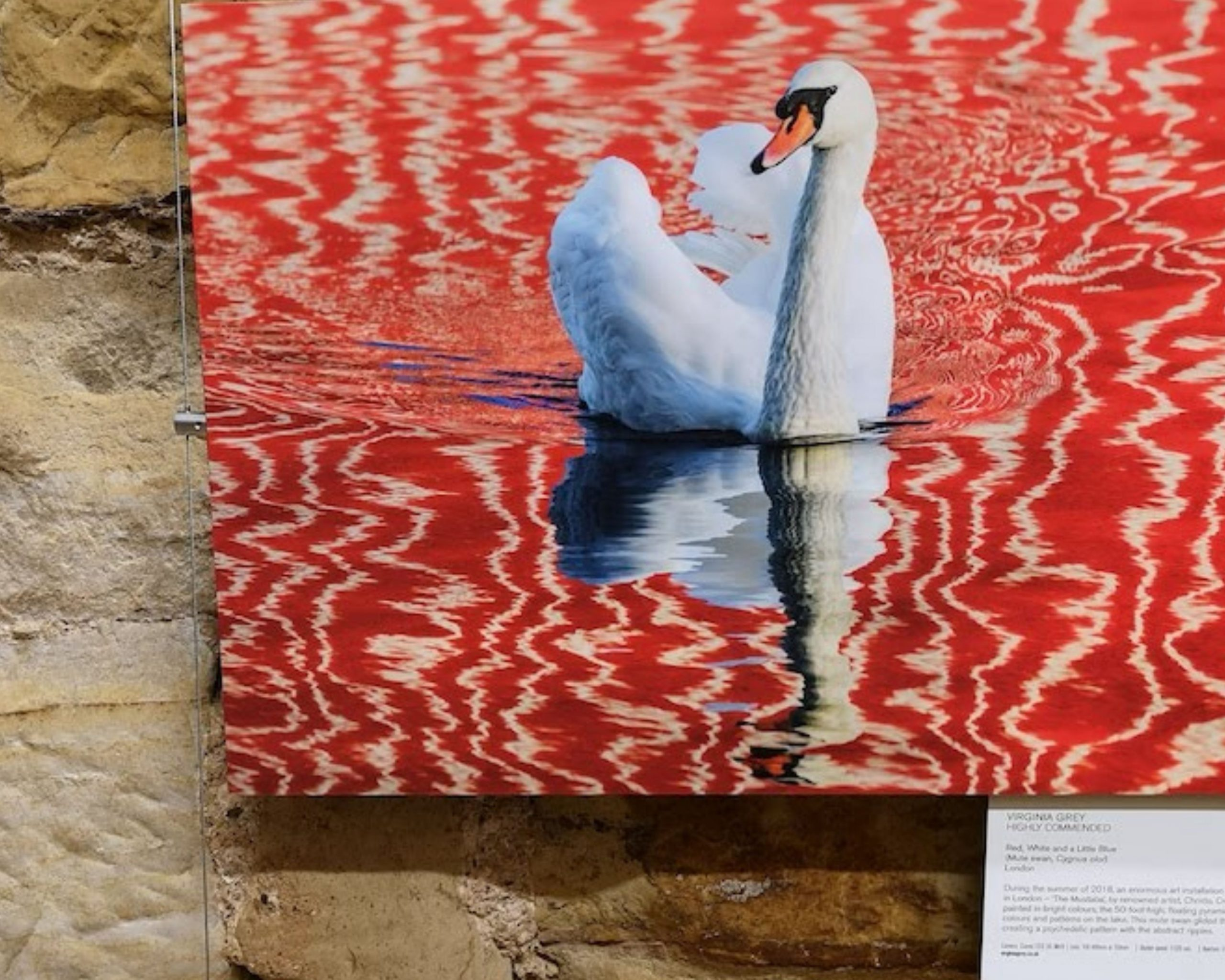 award-winning photography exhibition